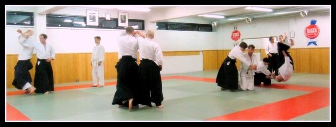 Aikido harjoittelu